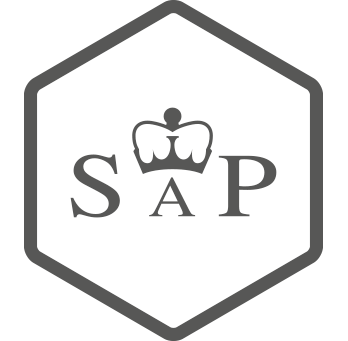 Icon Idealpackage Sap