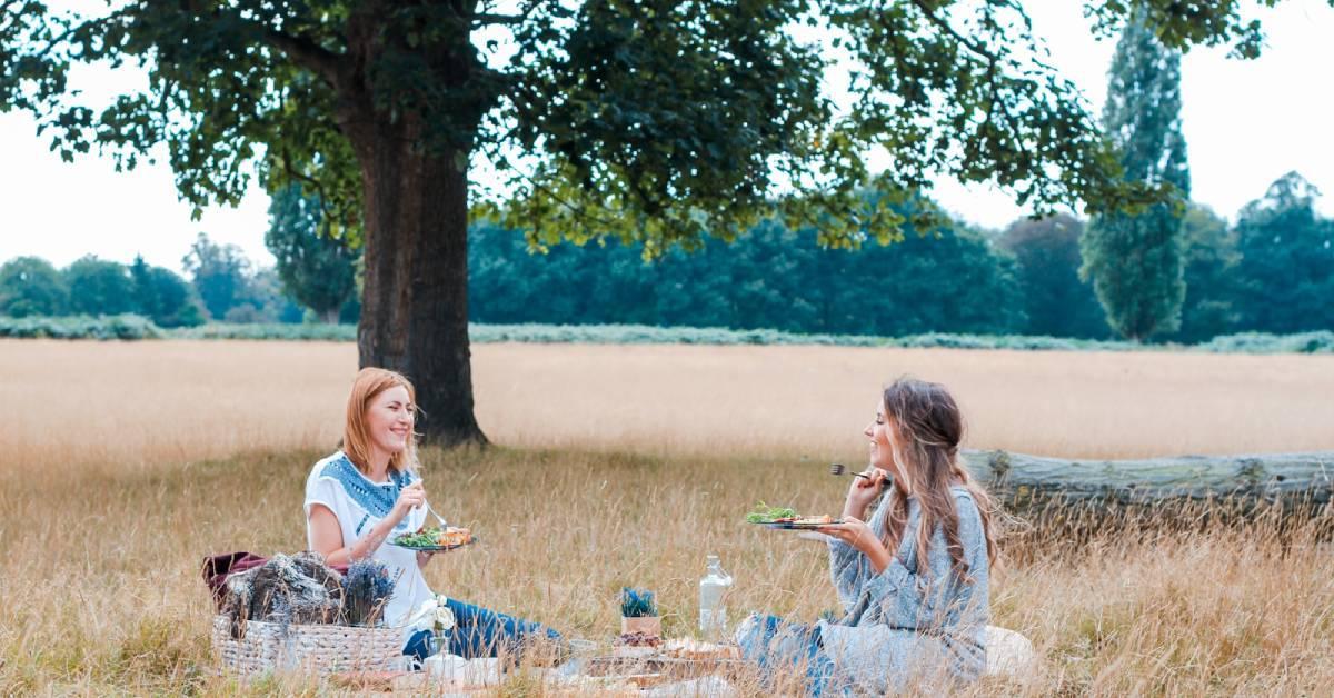 national-picnic-week-ideal.jpg#asset:190748