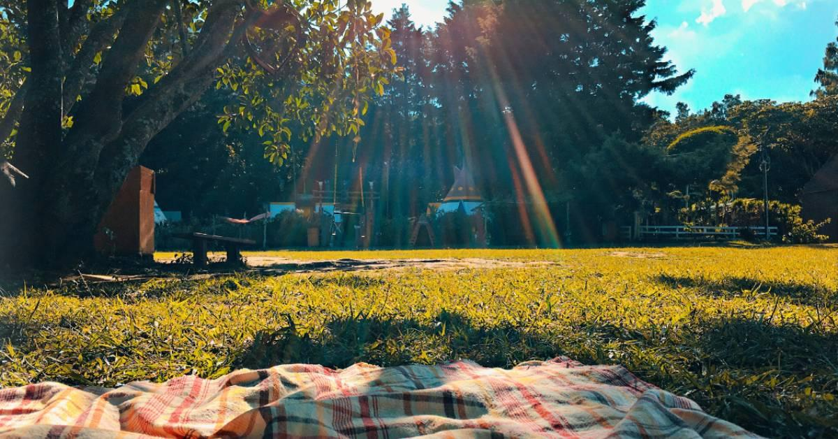 sustainable-picnic-ideal.jpg#asset:190747